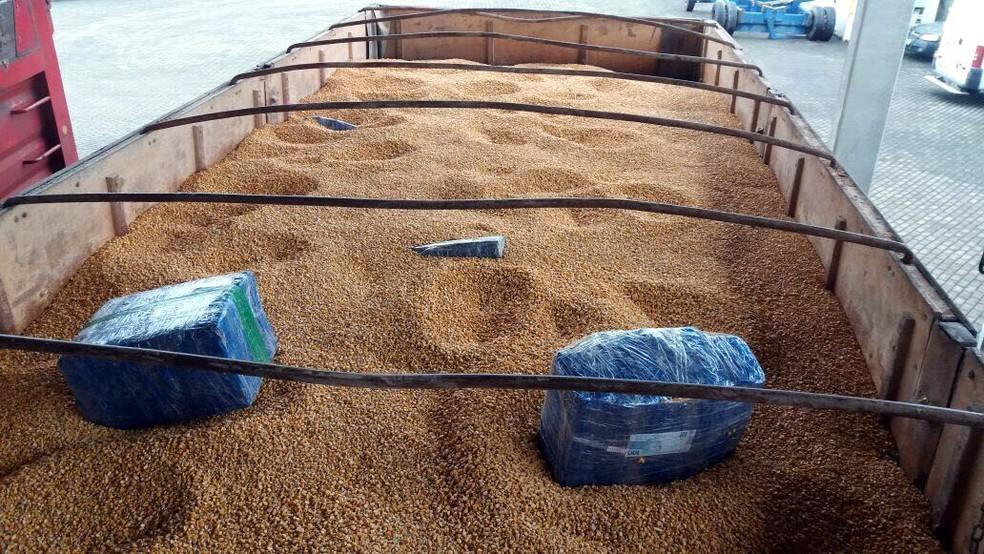 Pacotes com maconha foram encontrados em carreta de milho (Foto: PRF/Divulgação)