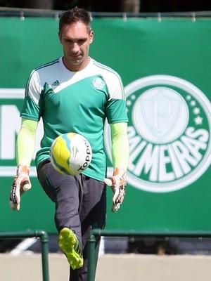 Fernando Prass Palmeiras (Foto: Cesar Greco/Ag Palmeiras/Divulgação)