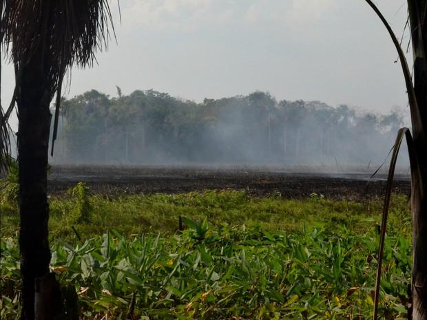 fogo consome a vegetação do local há cerca de uma semana  (Foto: Jéssica Alves/G1)