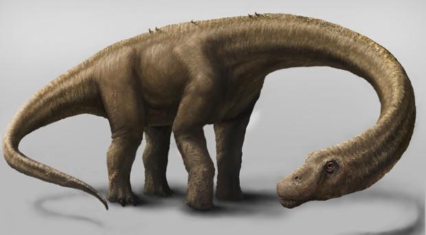 Concepção artística representa dinossauro 'Dreadnoughtus schrani', de 26 metros de comprimento (Foto: Mark A. Klingler/Carnegie Museum of Natural History )