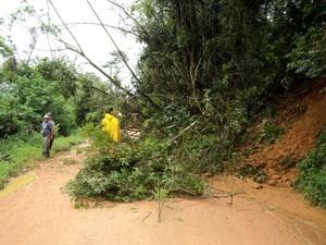 Prefeitura de Ibirama decretou situação de alerta por causa das chuvas (Foto: Prefeitura de Ibirama/Divulgação)