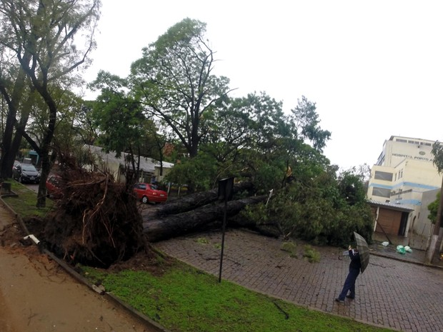 Chuva e ventania causam transtornos em Porto Alegre (Foto: Ivo Gonçalves/PMPA)