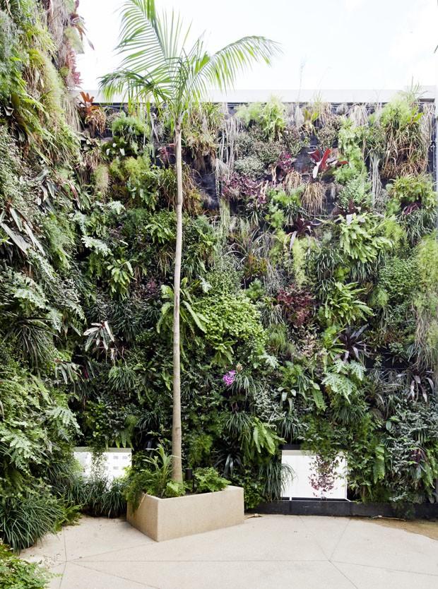 Apartamento amplo com jardins verticais (Foto: Maíra Acayaba/ Divulgação)