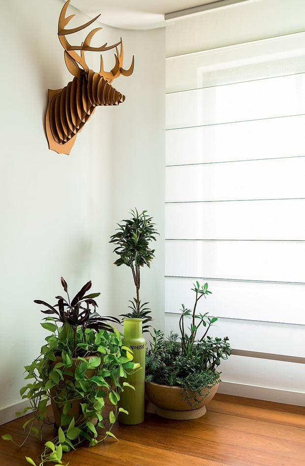 persiana-plantas-decoracao (Foto: Edu Castello/Editora Globo)