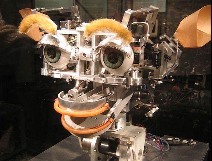 O Kismet, IA rudimentar desenvolvida pelo MIT (Foto: Wikimedia Commons) (Foto: O Kismet, IA rudimentar desenvolvida pelo MIT (Foto: Wikimedia Commons))