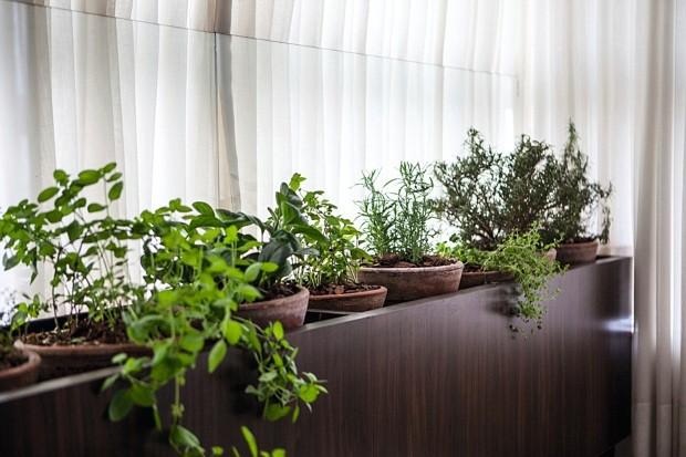 Horta. Dois tipos de manjericão, alecrim, orégano, tomilho e lavanda são cultivados na bancada próxima da mesa de jantar (Foto: Lufe Gomes / Editora Globo)