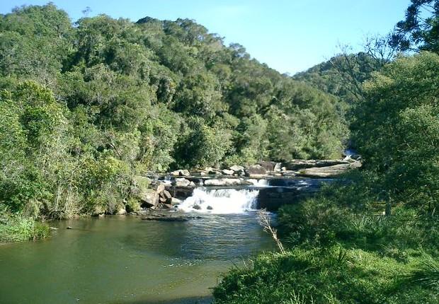 Rio Paraibuna no Parque Estadual da Serra do Mar (Foto: Diego Campos/Wikimedia Commons)