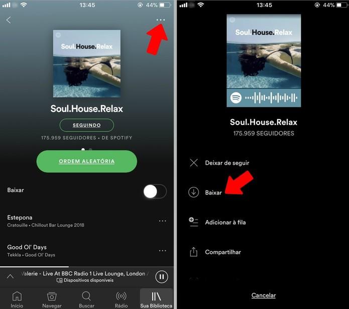 Baixe músicas para ouvir offline no Spotify no celular (Foto: Reprodução/Rodrigo Fernandes)
