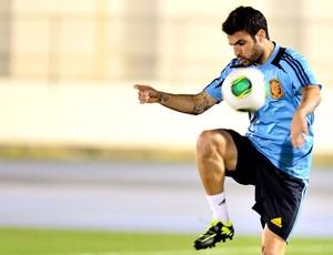 Fabregas treino Espanha no Engenhão (Foto: Marcos Ribolli / Globoesporte.com)