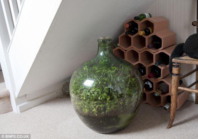 A garrafa fica embaixo da escada, na casa do inglês, onde recebe luz do dia (Foto: Reprodução/Daily Mail)