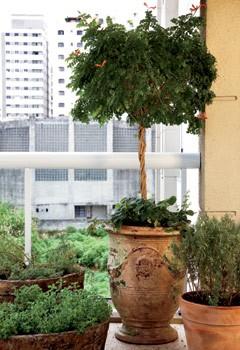 (Foto: Casa e Jardim)