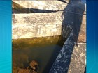 Morador flagra água empoçada na secretaria de Saúde de Palmas