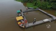 Antes da soltura, peixes-boi passam por aclimatação em água de rio