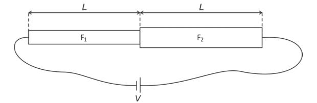 Sistema de fios metálicos (Foto: Reprodução/Fuvest)