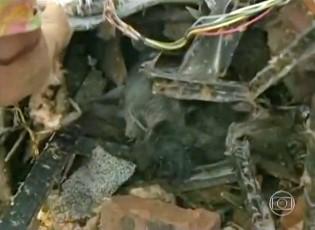 Senhora reencontra cão perdido em tornado durante entrevista (Foto: Rede Globo)