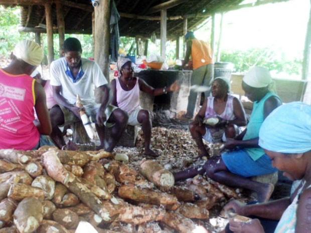 Famílias remanescentes de afrodescendentes vivem da agricultura, com plantio da mandioca (Foto: Divulgação/Incra)