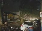Moradores registram imagens do  temporal de quarta-feira; confira