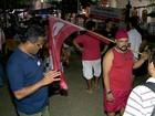 Estados têm manifestações pró e contra impeachment de Dilma