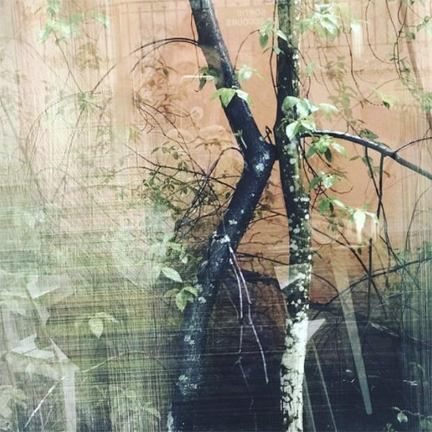 Karl's choice at Paris Photo. Pigment print forest by Sandra Kantanen at Purdy Hicks (Foto: @suzymenkesvogue)