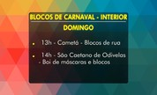 Confira a agenda dos blocos de Carnaval de Belém e do interior neste fim de semana (Reprodução/TV Liberal)