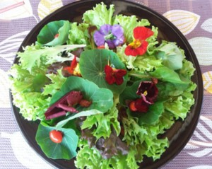 Chef também ensinou um salada com flores comestíveis (Foto: Rio Sul Revista)