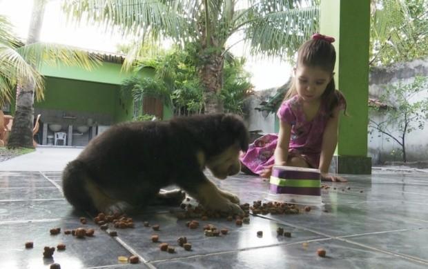 Crianças que cuidam de animais tendem a ser mais responsáveis (Foto: Roraima TV)