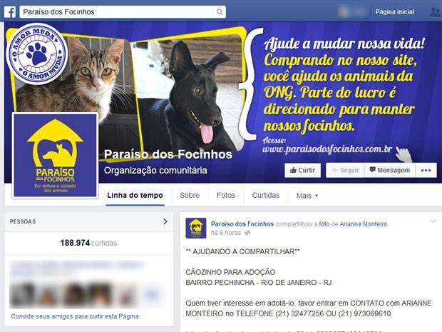 ONG Paraíso dos Focinhos tem quase 200 mil curtidas (Foto: Reprodução/Facebook)