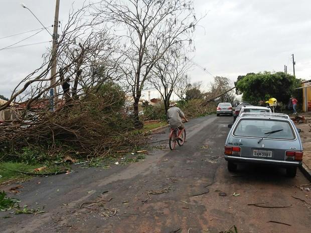 Vendaval causou estragos no município (Foto: Emerson Rodrigues/Panorama Notícias/Cedida)