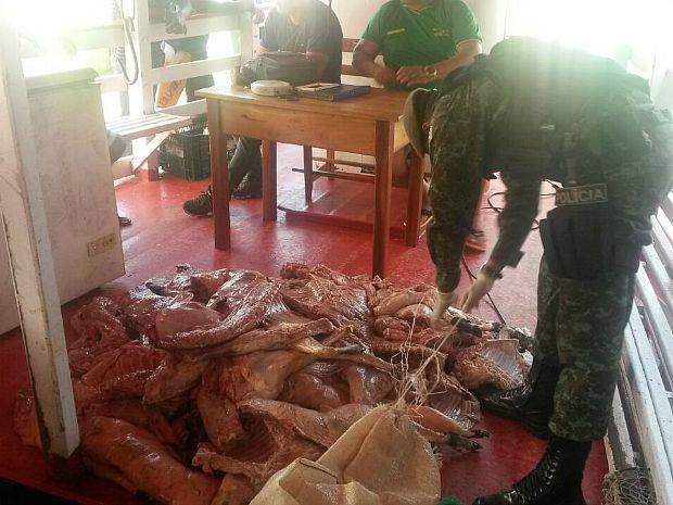Material foi apreendido pelo Batalhão Ambiental neste domingo (2) (Foto: Divulgação/Batalhão Ambiental)