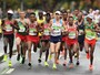 No ritmo dos coelhos: você sabe quem são eles em uma maratona? Descubra!