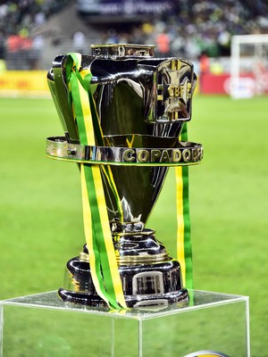 Palmeiras x Santos Taça (Foto: Marcos Ribolli)