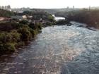 Gaema define plano para 2014 e pede atuação civil em políticas ambientais