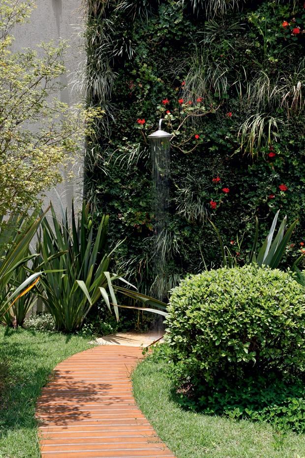 cerca viva para jardim fotos11 espécies de cerca vivas – Casa e