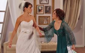 Regina Duarte e Gloria Pires adoram homenagem à cena clássica de 'Vale Tudo'