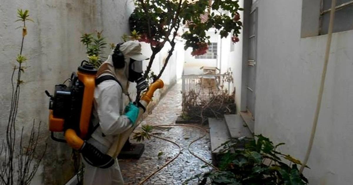 Penápolis decreta estado de emergência por causa da dengue - Globo.com