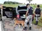 PM prende três suspeitos por tráfico de drogas em Salinópolis