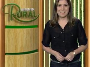 Saiba quais vão ver os destaques do Inter TV Rura deste sábado (Foto: Reprodução / Inter TV)