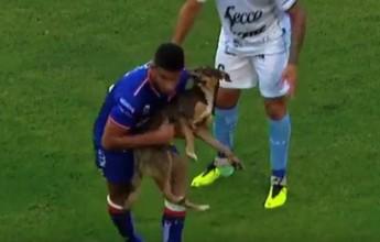 BLOG: Cachorro invade o campo no Argentino, e Unión de Santa Fe vence Temperley