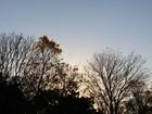 Sexta-feira com umidade do ar e temperaturas baixas em MS, diz Inmet