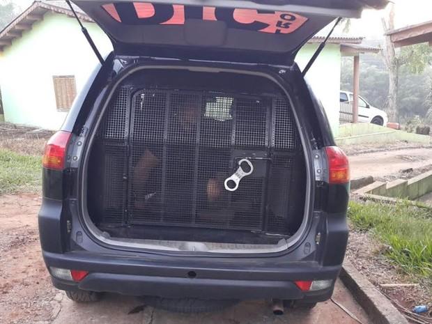 Os dois suspeitos de assalto foram pegos em Chapecó, no Oeste de SC (Foto: Polícia Civil/Divulgação)