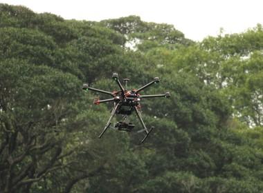 drone-macaco- (Foto: Divulgação)