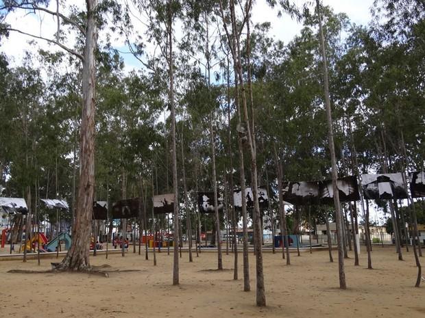 Parque Euclides Dourado (Foto: Gabriela Alcântara/ G1)