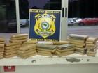 Polícia apreende quase 50 quilos de droga com jovens na BR-373