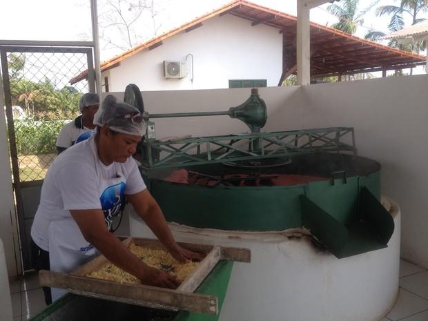 Produção da farinha de mandioca é uma das atividades estudadas (Foto: Fabiana Figueiredo/G1)
