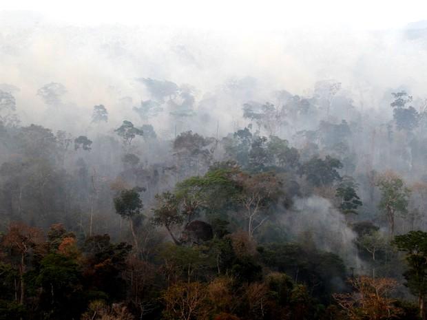 Outubro está próximo de registrar maior índice de queimadas em 2015 (Foto: Divulgação / Ibama)