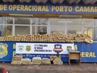Dois homens são presos em Icaraíma com cerca de 600 kg de maconha