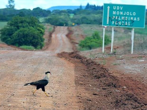 Trecho da DF-131 que liga as rodovias DF-205 à DF-128 e que será pavimentado (Foto: Tony Winston/Agência Brasília)