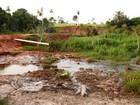 Fazendeiro é multado em R$ 127,2 mil por destruir matas ciliares em MS