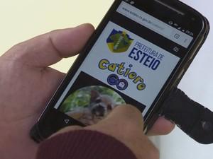 Pokémon Go, Catíoro Go, prefeitura Esteio, RS, campanha adoção animal animais (Foto: Reprodução/RBS TV)