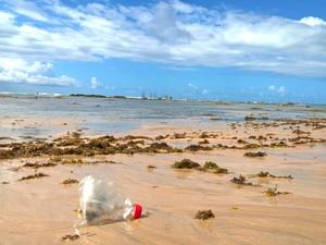 Garrafa PET possui plásticos de variações diferentes que permanecem há anos na natureza  (Foto: Waldson Costa / G1)